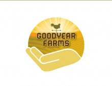 Goodyear Farms Project